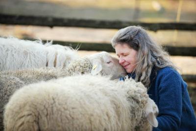 Kommunikation mit Schafen
